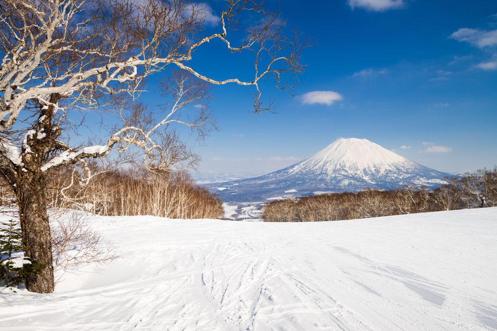 Niseko in northern Japan is known for the consistency of its snowfall and the quality of its powder: two elements that ensure it remains one of the most alluring winter sports destinations in Asia